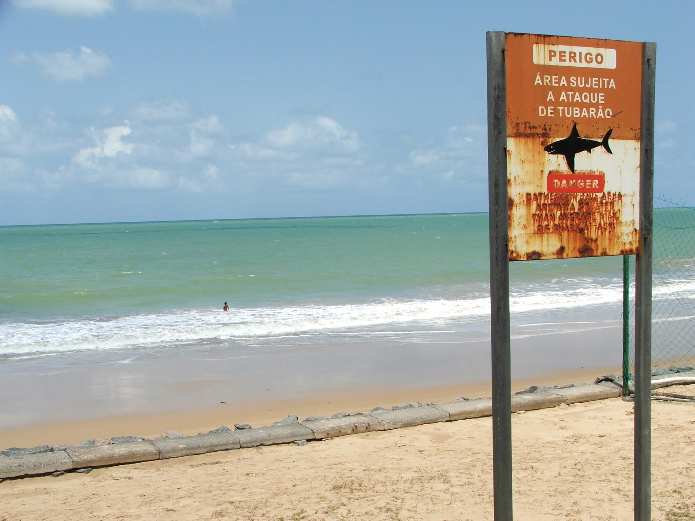 Diário <b>de</b> Bordo: Recife encantadora | Blog do Jornalista Alexandre ...